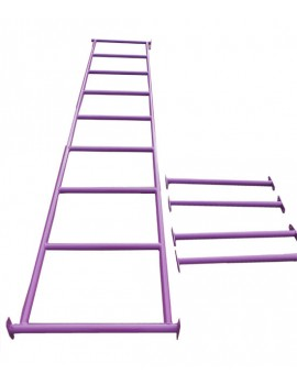 Monkey Bar Set with Step Rails PURPLE
